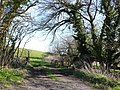 Field Gate near Church Knowle - geograph.org.uk - 715483.jpg