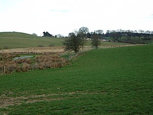 Dryfesdale - Fields near Lockerbie: marshy area near the remains of a Roman camp.