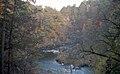 Findhorn Gorge, Moray (200578) (9461609839).jpg