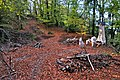 Finkenstein am Faaker See Goritschach Kanzianiberg Hoehensiedlung 08102011 777.jpg