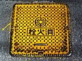 Fire.hydrant.cover.in.ueda.city.jpg