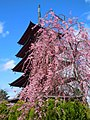 Five-Storied Pagoda - panoramio.jpg