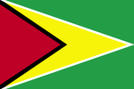Flag of Guyana (2004).png