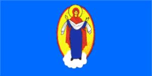 Maryina Horka - Image: Flag of Marjina Horka