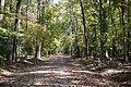 Flats Trail (6251276997).jpg