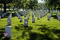 Flickr - The U.S. Army - Arlington National Cemetery.jpg