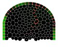 File:Flux-Based-Transport-Enhancement-as-a-Plausible-Unifying-Mechanism-for-Auxin-Transport-in-Meristem-pcbi.1000207.s017.ogv