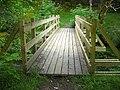 Footbridge in Leanachan Forest - geograph.org.uk - 511341.jpg