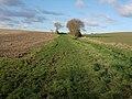 Footpath towards Burrough Green - geograph.org.uk - 1055853.jpg
