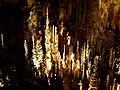 Forêt de stalagmites.JPG