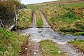 Ford through the Burn of Desso - geograph.org.uk - 1290588.jpg