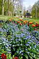 Frühling im Bad Mergentheimer Kurpark. 20.jpg