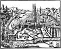 Freiburg Stumpf.jpg