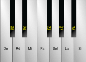Solfège - The names of the notes in Romance languages.