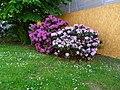 Frohngasse, Pirna 120278656.jpg