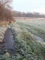 Frosty morning, Sandy Hill - geograph.org.uk - 1204810.jpg