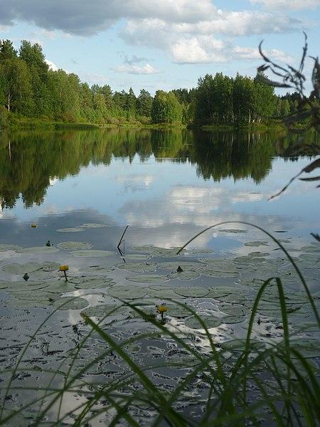 File:G. Syktyvkar, Komi Republits, Russia - panoramio.jpg