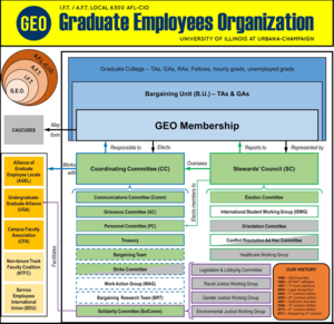 Graduate Employees' Organization - GEO's Organizational Structure