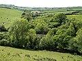 Gara valley at Washwalk - geograph.org.uk - 1323606.jpg