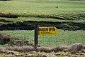 Garden Open - geograph.org.uk - 1771895.jpg