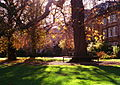 Garden Quad, Balliol College 2004-11.jpg