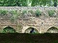 Garden Scene - Nishat Bagh Garden - Srinagar - Jammu & Kashmir - India - 02 (26237352794).jpg