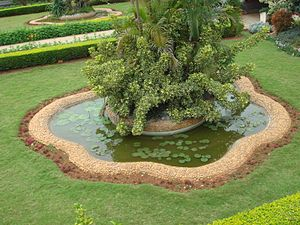 English: Garden of Ramakrishna Institute of Mo...
