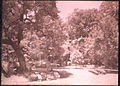Garden or Park, by Sarah Angelina Acland, Early 20th Century.jpg