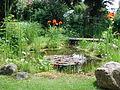 Gartenteich.jpg