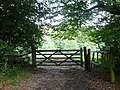 Gate on Anstie Lane, Coldharbour, Surrey (2) - geograph.org.uk - 1404274.jpg