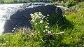 Getik River Tavush 1.jpg