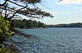 Gfp-new-york-wellesley-island-state-park-shoreline.jpg