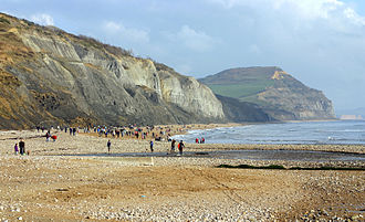 Mary Anning - The Jurassic coast at Charmouth, Dorset, where the Annings made some of their finds