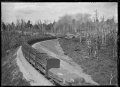 Goods train ascending the Raurimu Spiral, on the North Island Main Trunk Line ATLIB 284121.png