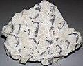 Graphic granite (Ruggles Pegmatite, Devonian; Ruggles Mine, New Hampshire, USA) (48751570932).jpg