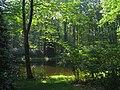 Graver Arboretum - 365.jpg