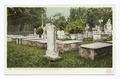 Graveyard, Presidents Row, Princeton Univ., Princeton, N. J (NYPL b12647398-66429).tiff