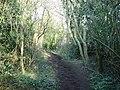 Green Lane - geograph.org.uk - 691477.jpg