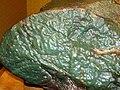 Green nephrite jade ventifact (Precambrian; Crooks Mountain, Fremont County, Wyoming, USA) 3 (24355763130).jpg
