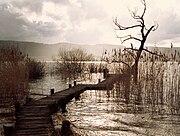 Greifensee - Niederuster-Greifensee ZH