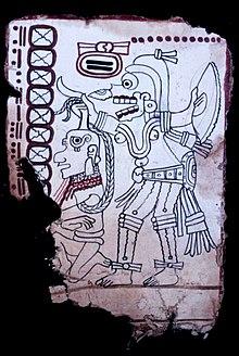 Maya codices