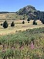 Grosse roche Chaudeyrolles n1.jpg