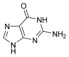 external image 220px-Guanine_chemical_structure.png