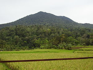 Pulosari - Image: Gunung pulosari 1