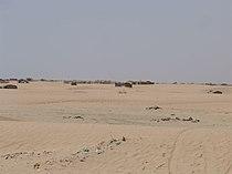 Gwadar Desert.jpg