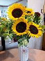 HK big yellow 3 Sunflower Aug-2012.jpg