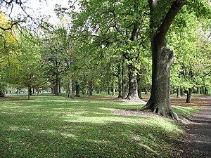 Hagley Park - Image: Hagley Park 03 gobeirne