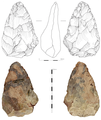 Hallow Handaxe, early middle Palaeolithic.png