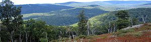 Harriman State Park (New York) - View from Harriman State Park, facing north