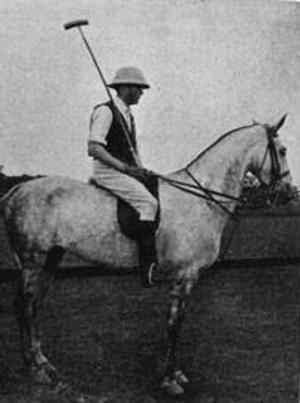 harry rich rich in 1901